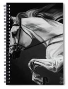 White Beautiful Horse B And W Spiral Notebook