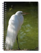 White Beauty Of The Marsh Spiral Notebook