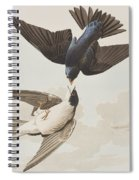 White-bellied Swallow Spiral Notebook