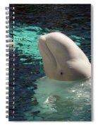 White Beluga Whale 1 Spiral Notebook