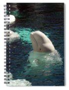 White Beluga Whale 3 Spiral Notebook