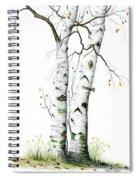 White Birch Spiral Notebook