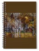 White Birch Wbwc Spiral Notebook