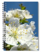 White Blossoms Art Prints Spring Tree Blossoms Canvas Baslee Troutman Spiral Notebook