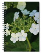 White Bridal Wreath Flowers Spiral Notebook