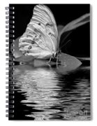 White Butterfly Bw Spiral Notebook