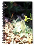 White Butterfly On Goldenseal Spiral Notebook