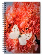 White Butterfly On Pink Carnations Spiral Notebook