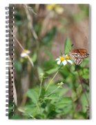 White Butterfly Spiral Notebook