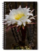 White Cactus Fower Spiral Notebook