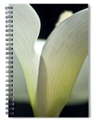 White Calla Lily Spiral Notebook