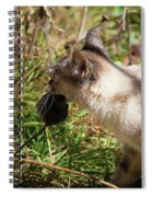 White Cat On The Hunt  Spiral Notebook