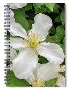 White Clematis 0808 Spiral Notebook