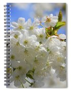 White Coat Spiral Notebook