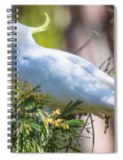 White Cockatoo Spiral Notebook