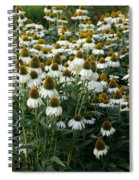 White Coneflower Field Spiral Notebook