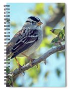 White-crowned Sparrow 0033-111017-1cr Spiral Notebook