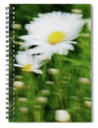 White Daisy Digital Oil Painting Spiral Notebook
