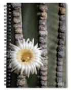 White Desert Jewel Spiral Notebook