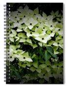 White Dogwood Spiral Notebook