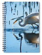 White Egret At Horicon Marsh Wisconsin Spiral Notebook