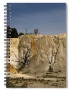 White Elephant Back Terrace Spiral Notebook