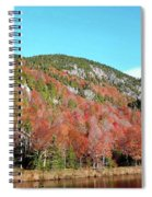White Face Mt.  Spiral Notebook