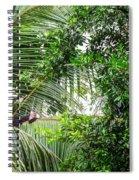 White Faced Capuchin Monkey Costa Rica Spiral Notebook