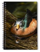 White-faced Whistling Duck  Spiral Notebook