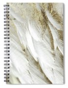 White Feathers With Gold Spiral Notebook