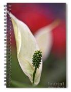 White Flamingo Flower Spiral Notebook