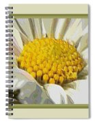 White Flower Abstract With Border Spiral Notebook