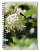 White Flowers On Canvas Spiral Notebook