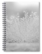 White Frost Spiral Notebook
