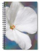 Winter White Geranium  Spiral Notebook