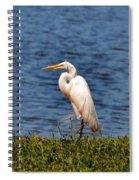 White Heron Spiral Notebook