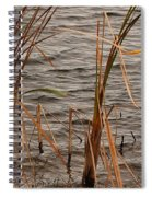 White Heron Spiral Notebook