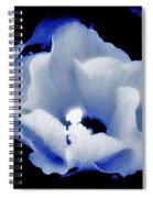 White Hibiscus On Black Background Spiral Notebook