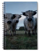 White High Park Cow Herd Spiral Notebook