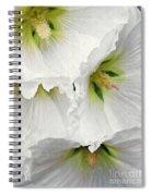 White Hollyhocks Spiral Notebook