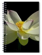 White Hot And Graceful Spiral Notebook