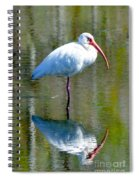 White Ibis And Reflection Spiral Notebook