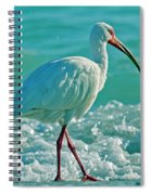 White Ibis Paradise Spiral Notebook