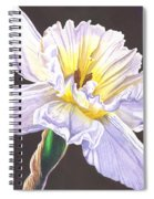 White Jonquil Spiral Notebook