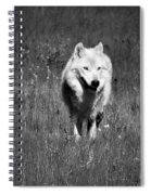 White Lady Spiral Notebook