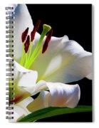 White Lilium Spiral Notebook