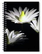 White Lillies Spiral Notebook
