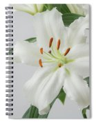 White Lily 2 Spiral Notebook