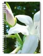 White Lily Flowers Art Prints Lilies Giclee Baslee Troutman Spiral Notebook