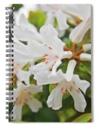 White Love 3 Spiral Notebook